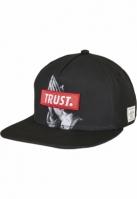 C&S WL Trust Cap